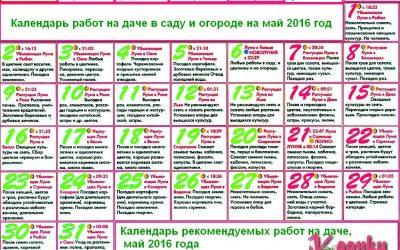 календарь работ в саду и огороде 2016 год май